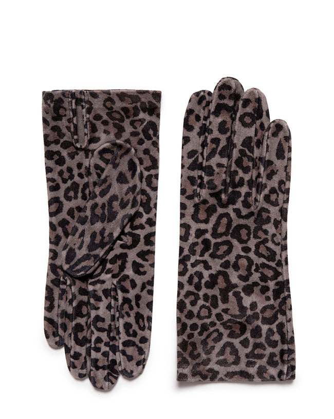 Leopardo Corto Grey