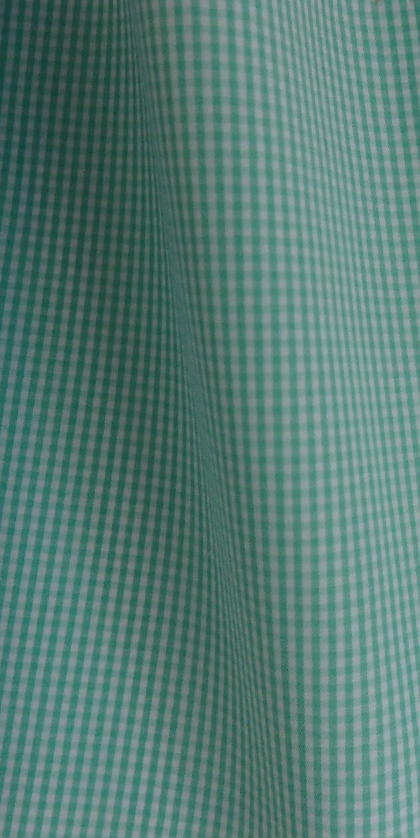 Mint Green Check