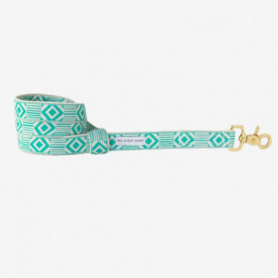 Out of the box Teal & Cream leash