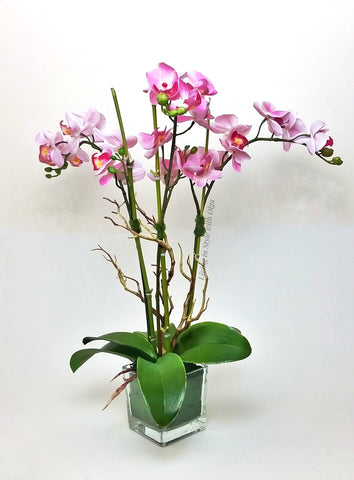 Home Decor Medium orchids, pink. - Living in Style with Olga