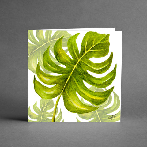 Kvadratkort - Monstera [20-pack]
