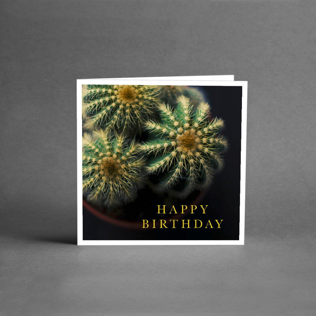MINI Collection - Happy birthday cactus [25-pack]