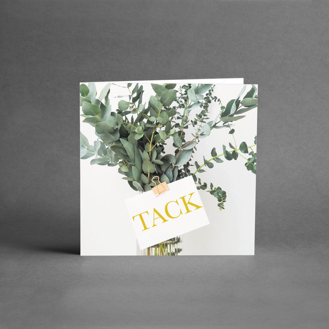 MINI Collection - Tack eucalyptus [25-pack]