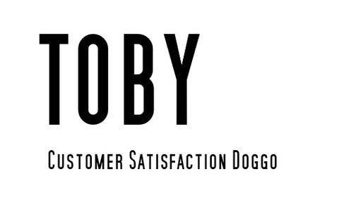 Toby Go Dive Tasmania Customer Satisfaction Doggo