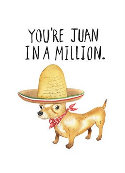 You're Juan in a million