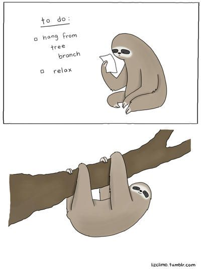 Sloth- To Do - Maktus