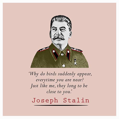 Stalin Quote- Why do birds suddenly appear - Maktus