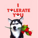 Tolerate You - Maktus