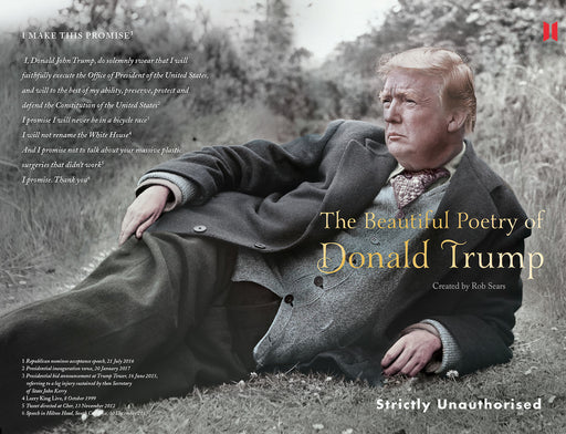 The Beautiful Poetry of Donald Trump - Maktus