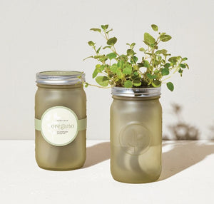 Garden Jar Oregano