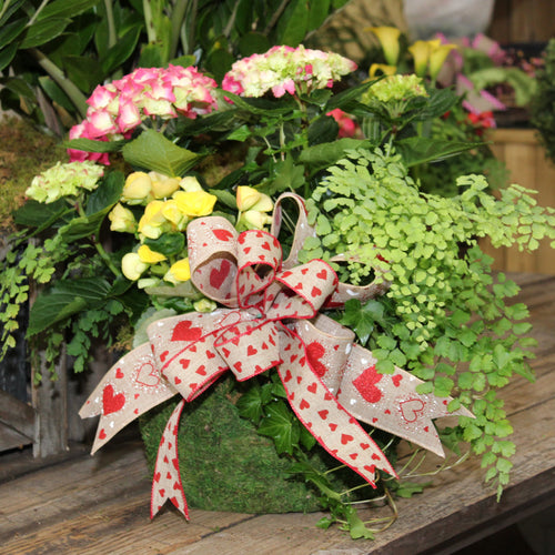 $100 Valentine's Living Arrangement Flower Basket with Bow