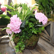 $125 Living Arrangement Flower Basket with Bow