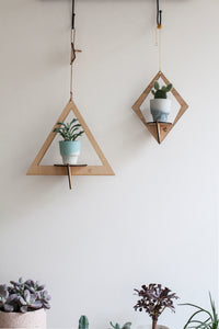 Wooden Ecodesign Airplanter - triangle
