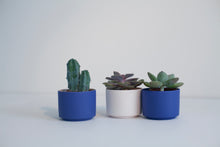 Porcelain 2-tone mini planter - blue+blue