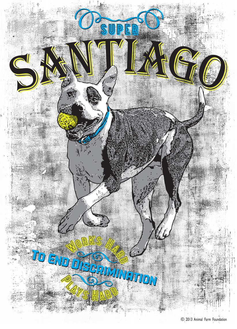 Santiago Working Hard to End Discrimination T-Shirt