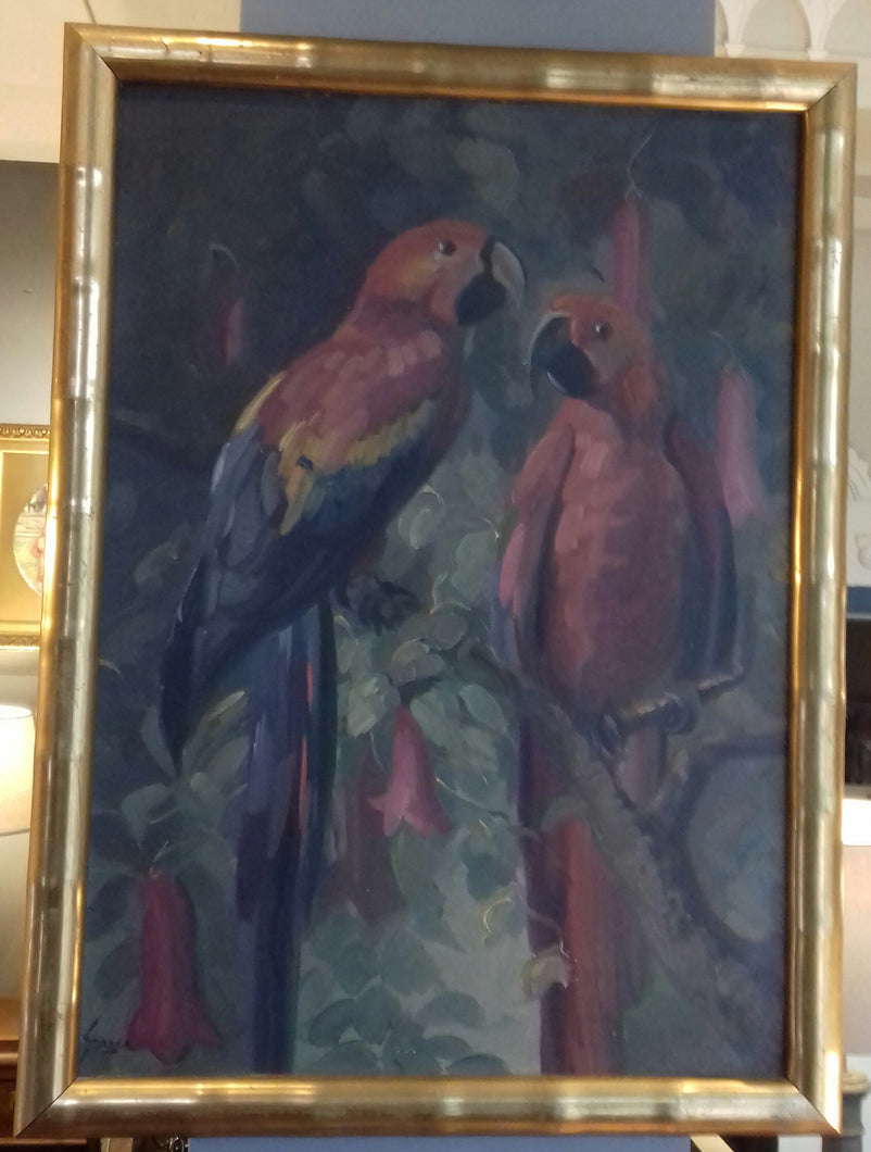 4) Macaws Oil on Canvas / English / c1950's
