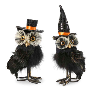 Assorted Black Feather Owls with Hats (Grad. Sizes)
