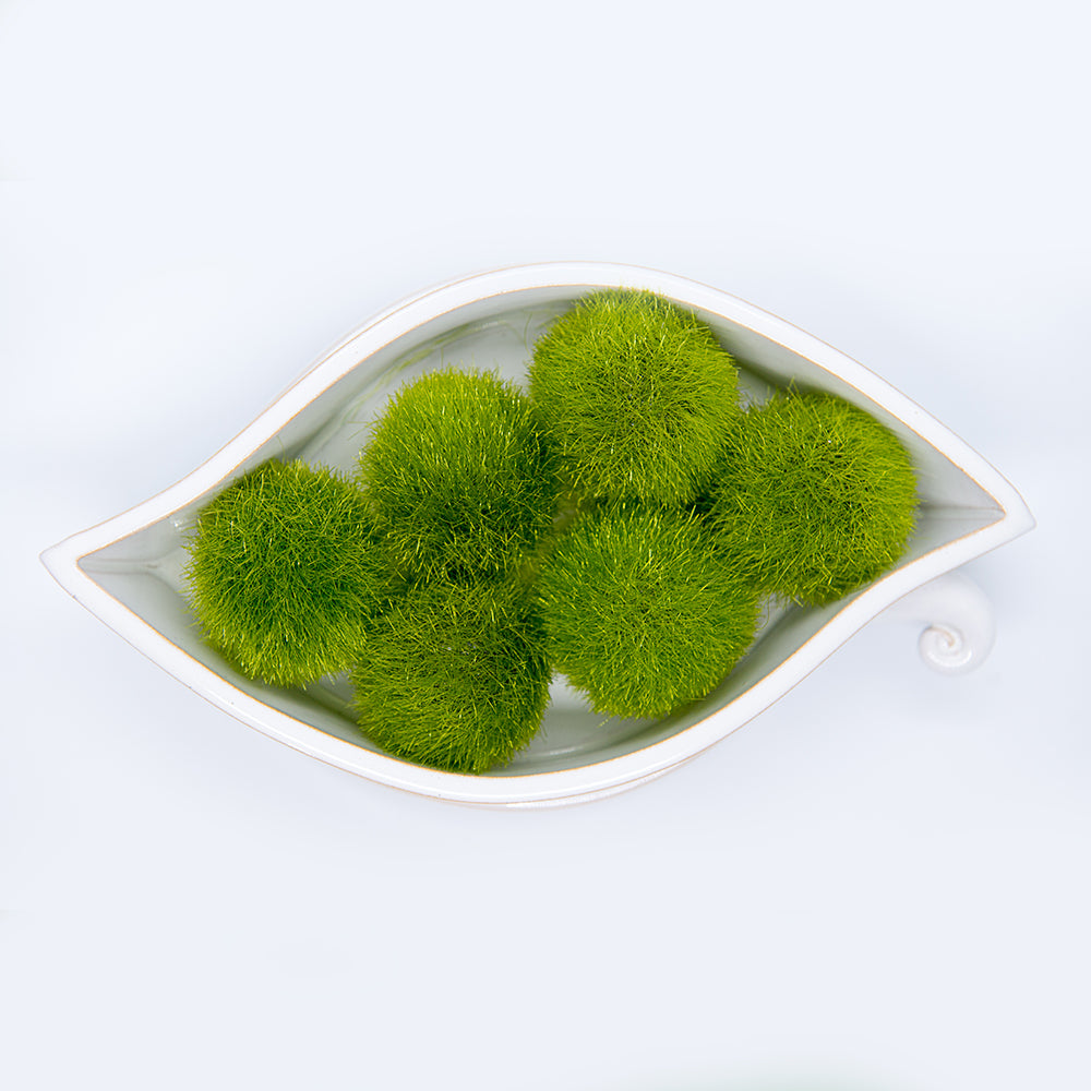 Fuzzy Moss Balls Bag of 12 2