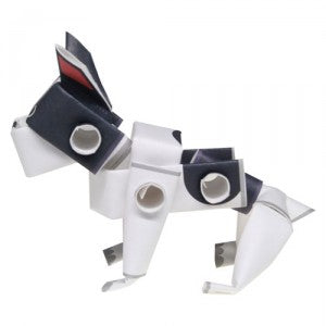 Piperoid animals French Bulldog
