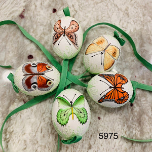Peter's Hand Painted Egg from Austria 5975