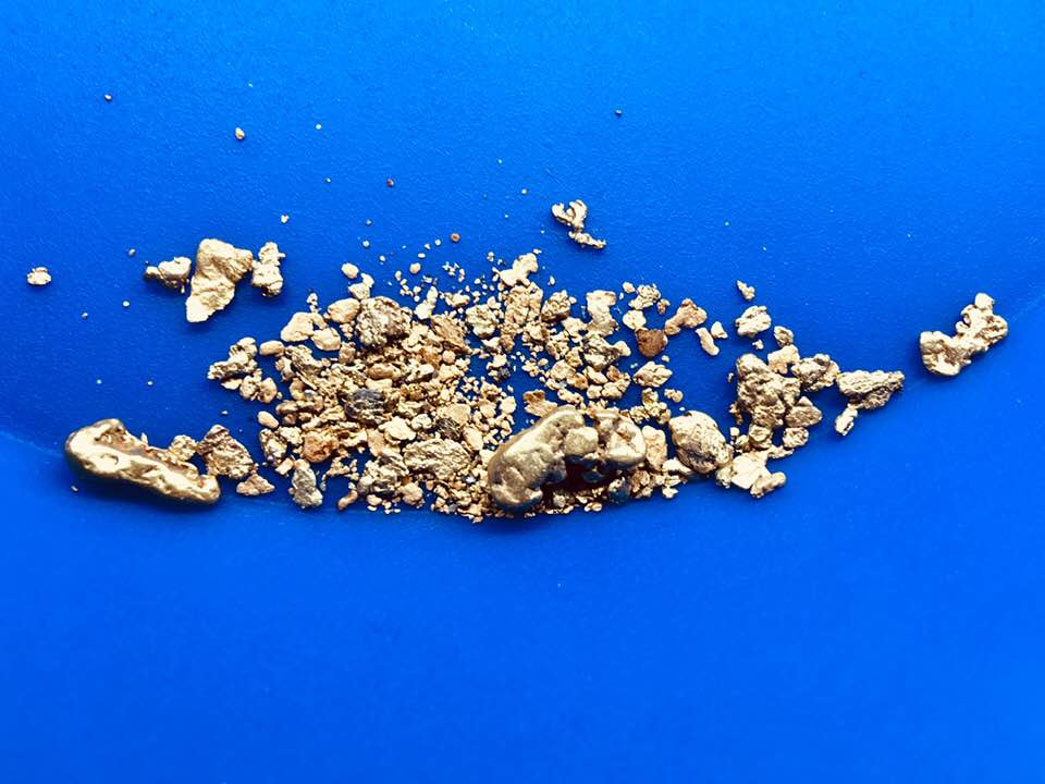 iP4G Motherlode Paydirt 4 grams of gold, 2 nuggets, Up to 4 lbs* of paydirt - Guaranteed