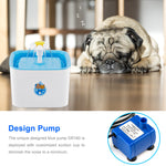 Filtered Water Fountains for Pets