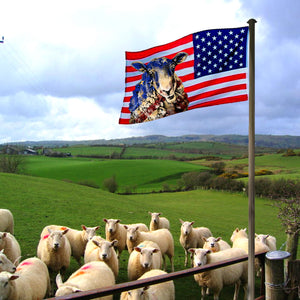 Flag Sheep 4July