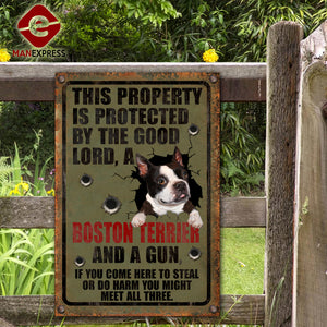 Boston Terrier Dog Printed Metal Sign 105-TA