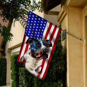 Flag Pitbull 4July