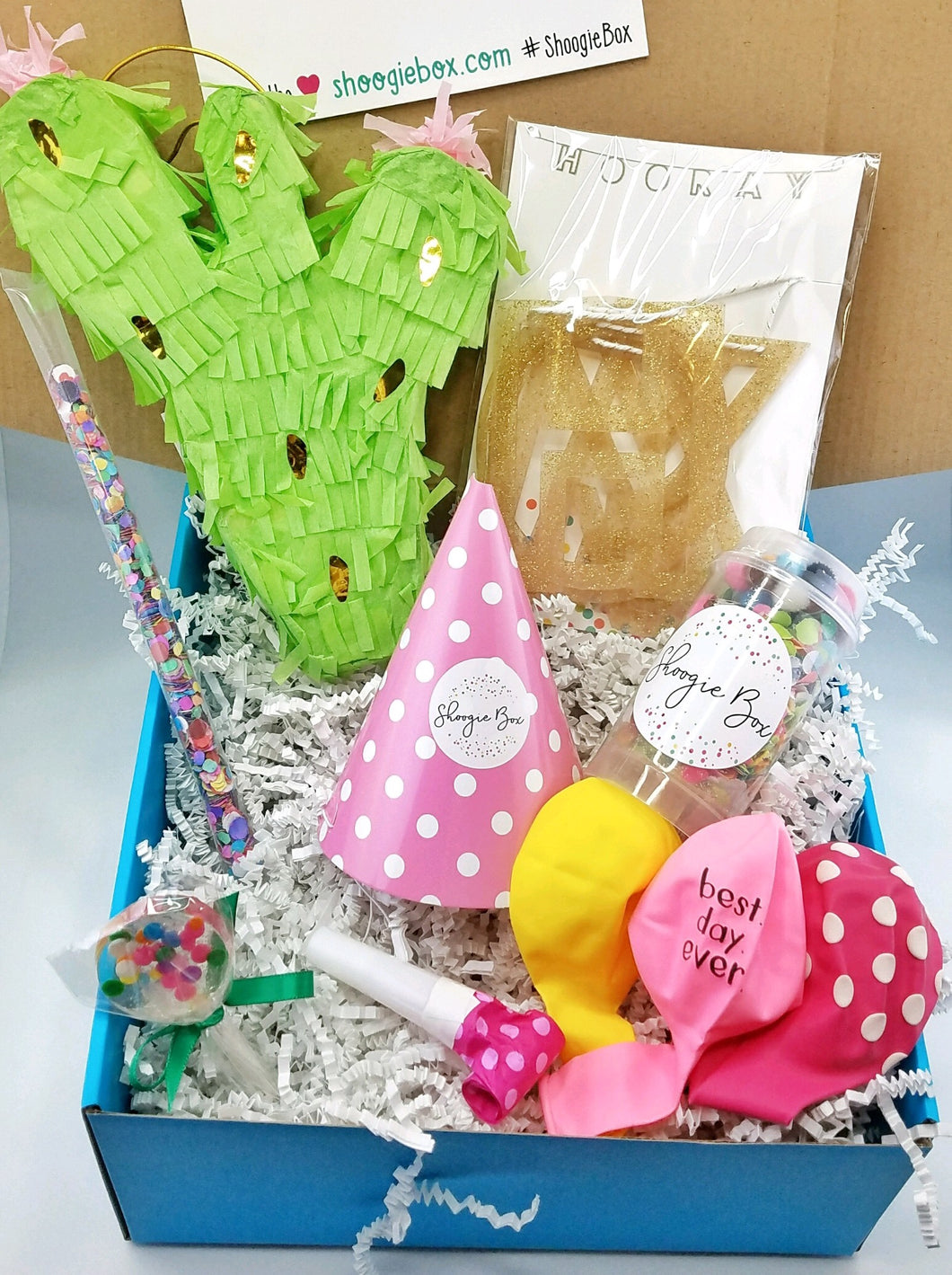 Deluxe Party Box- cactus