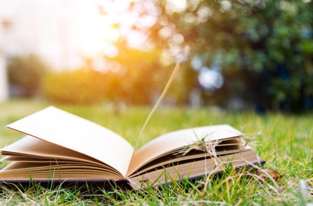 4 Books Any Guy Will Enjoy This Summer