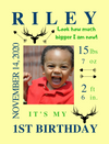 Easel Back Canvas for Birthday Milestones: 6 PLAYFUL Themes to choose from