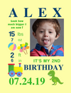 Framed Canvas for Birthday Milestones: 6 PLAYFUL Themes to choose from