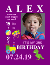 Hanging Canvas for Birthday Milestones: 6 PLAYFUL Themes to choose from