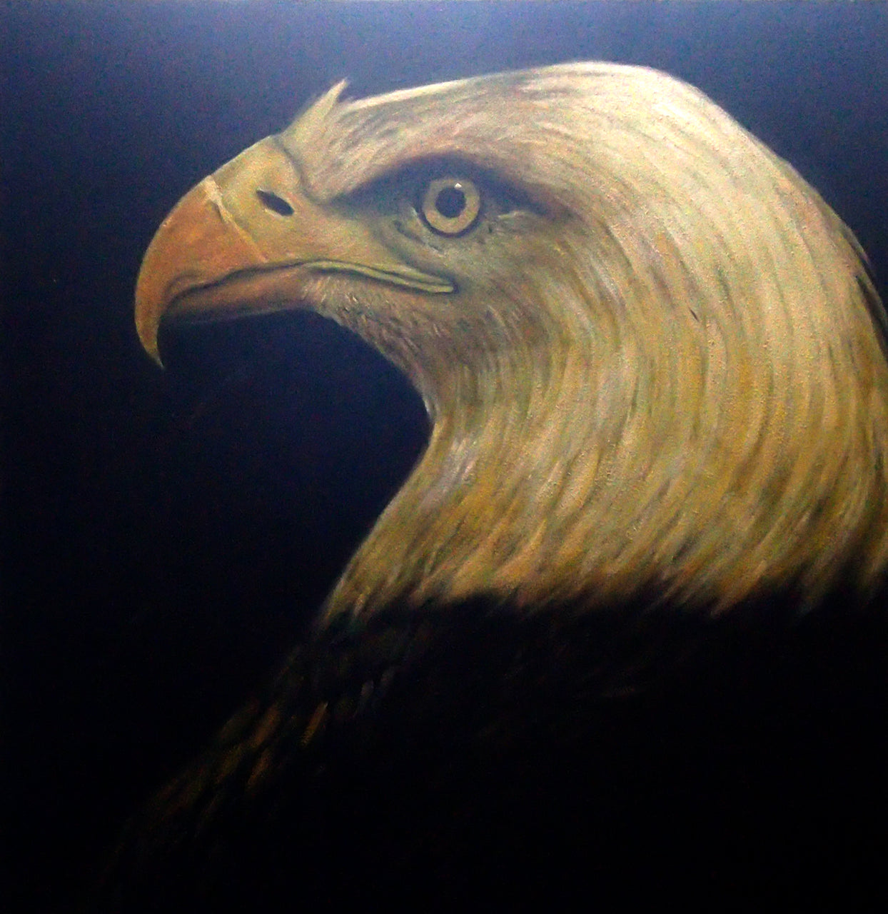 "AN4020453 - 40""x40"" Original Oil Painting"