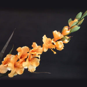 HCFL5847 - Long Stem Orange Gladiola