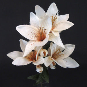 HCFL5853 - Cream Long Stem S Lily