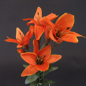 HCFL5855 - Rust Long Stem S Lily