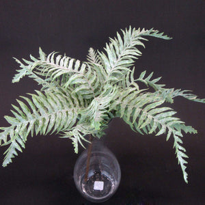 HCFL5931 - Frosted Fern