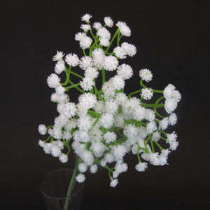 HCFL5937 - Long Stem Baby's Breath