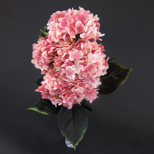 HCFL5997 - Peach Cherry Blossom Hydra Bouquet\