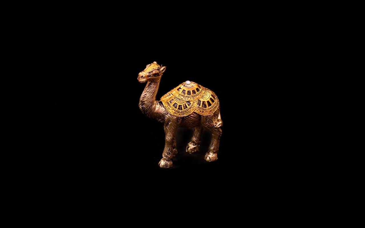 HCHD5024 - Gold Camel Set - 1 of 5