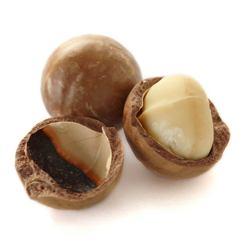 Al Rifai Macadamia Salted in Shell