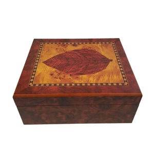 Cigar Humidor - Medium - 30+ Cigars - BE34