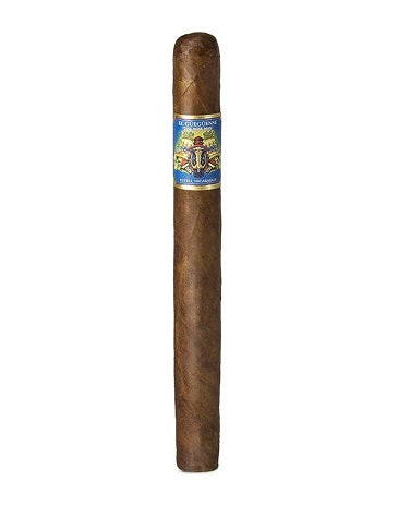 Foundation - El Gueguense - 7 x 48 Churchill
