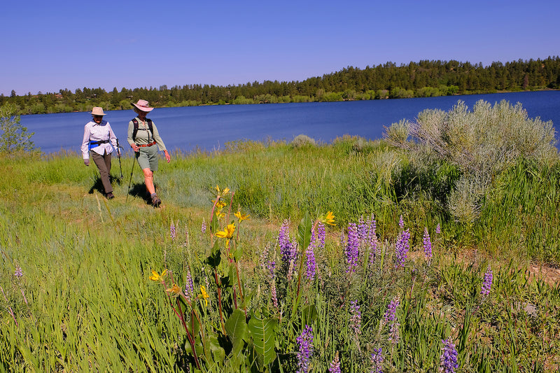 Looking for an Adventure? Learn more about Visiting Colorado State Parks this Summer