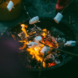 The 8 Best Foods for Camping