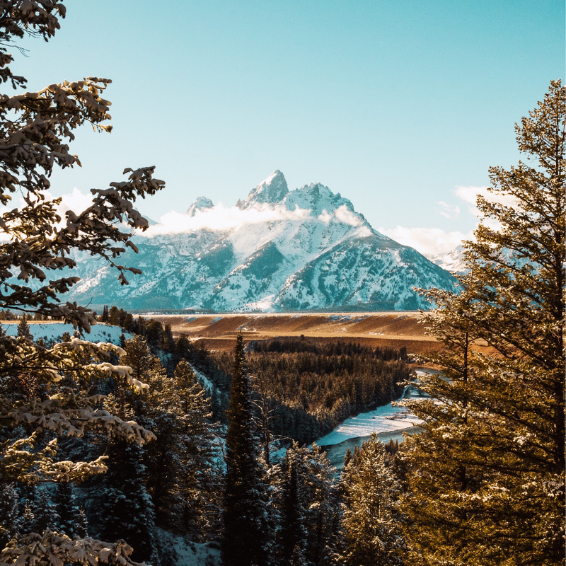 How to Make the Best of Your Trip to Grand Teton National Park