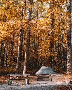 The Best Fall Camping Getaways