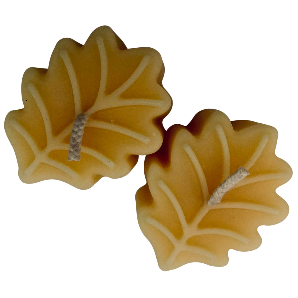 BEESWAX LEAF CANDLES